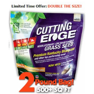 Does Cutting Edge Grass Seed work?