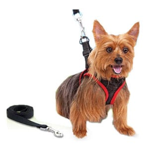 Does the Comfy Control Harness really work?