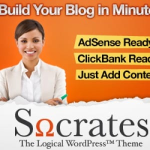 Does the Socrates WordPress Theme work?