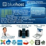 Does Bluehost work?