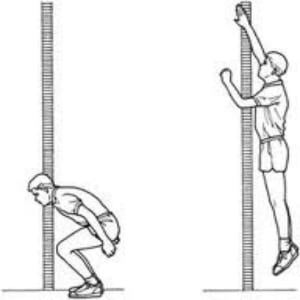 Individuals With Disabilities furthermore Acl Tightrope Rt additionally 12988 Side Shuffle How To Do Exercise as well Hearing conservation program besides Controller At89s52. on training program