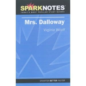 Do SparkNotes work?