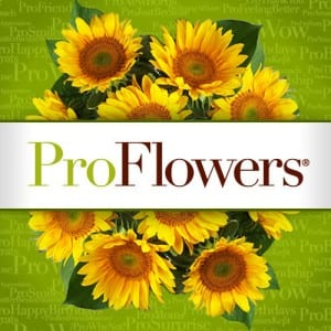 Does ProFlowers work?
