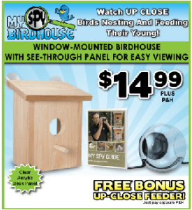 Does My Spy Birdhouse Work?
