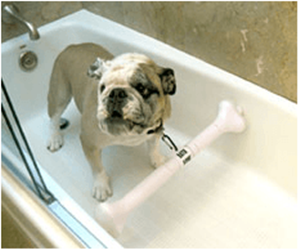 Does Bath Bone Work?