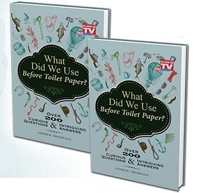 Does What Did We Use Before Toilet Paper Work?