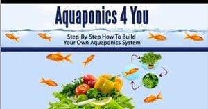 Does Aquaponics 4 You Work?