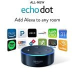 Does Echo Dot Work?