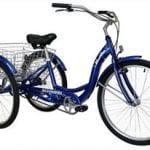 Does the Schwinn Meridian Adult 3 Wheel Bike Work?