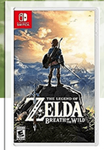 Does Zelda Breath of the Wild Work?