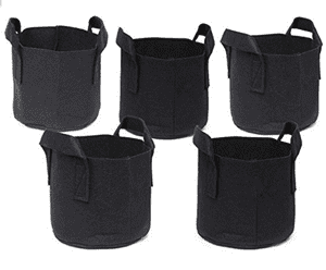 Do the One Gallon Grow Bags Work?